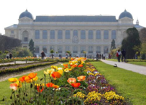 jardin-des-plantes-parisi